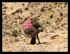 femme sud Tunisie