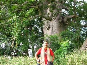 Baobab voyage sénégal