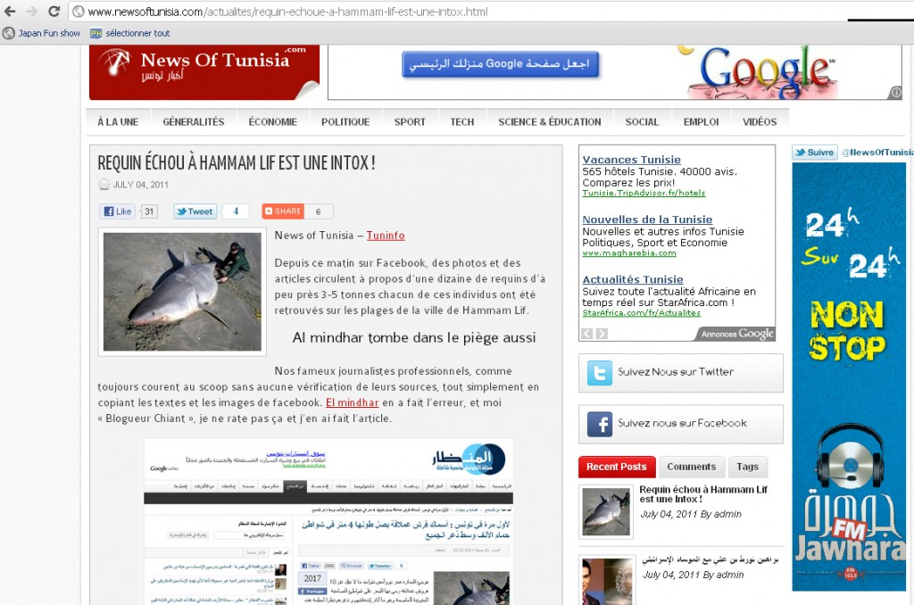 News of Tunisia requin tunisie