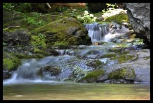 chute d'eau shenandoah parc
