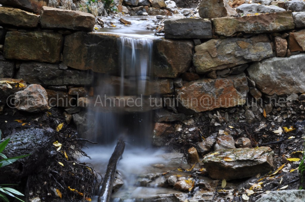 L'un des ruisseaux de Djebel Bargou