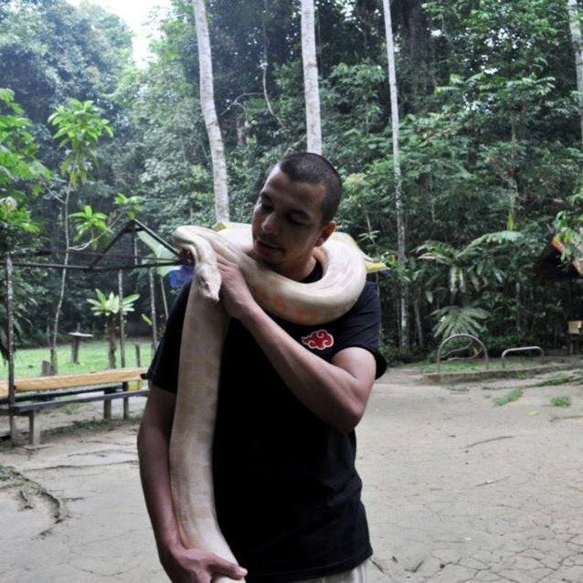python albinos taman negara