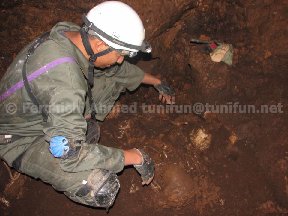 squelette grotte eglantine tunisie