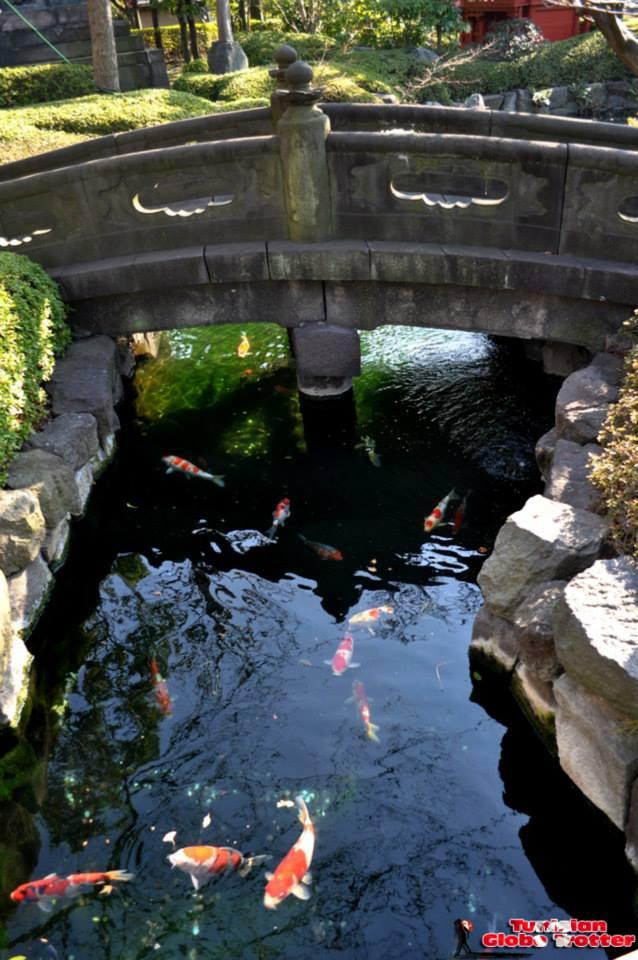 Jardin Asakusa