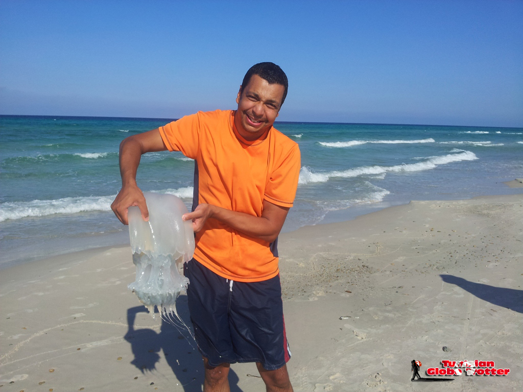 Meduse Tunisie Hammam Ghezaz