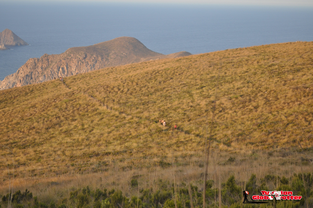 sentier randonnee Galite